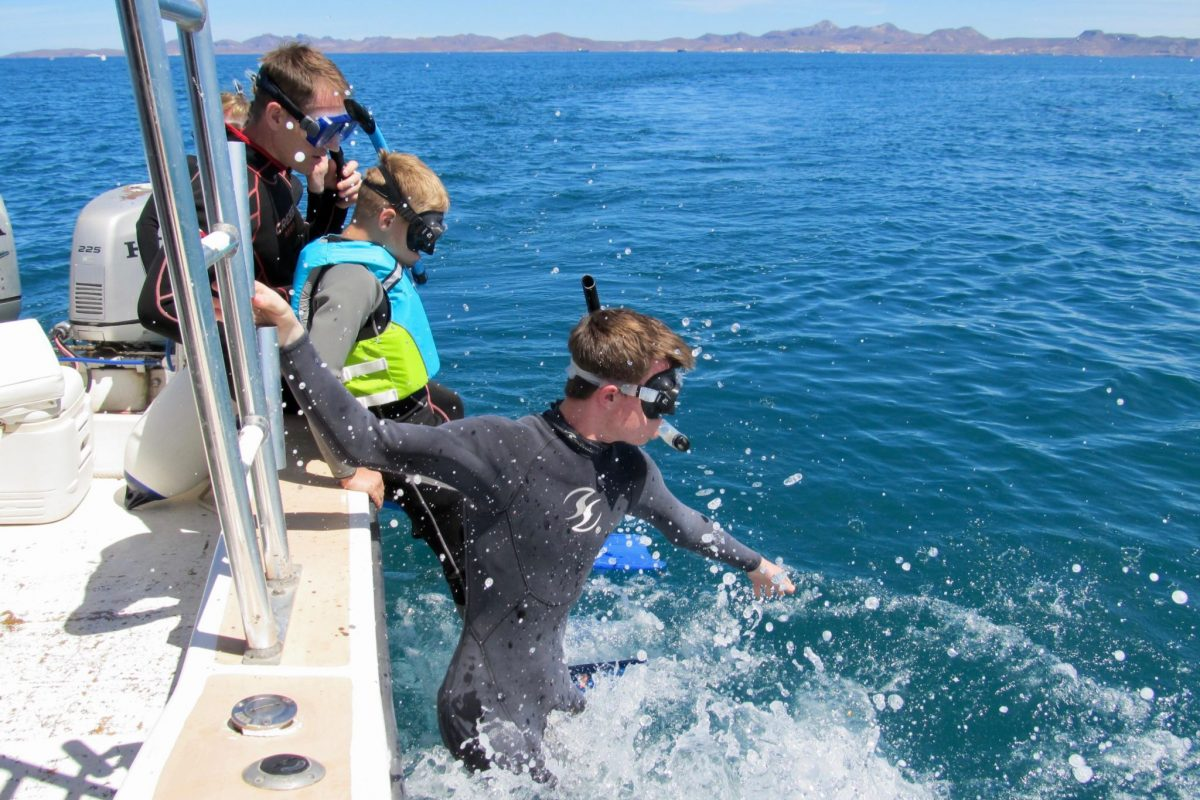 Kid jumping into ocean, snorkeling, during 2018 Family Adventure Week at the CSU Todos Santos Center.